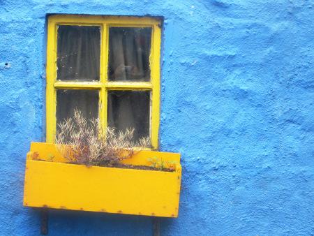 Yellow Window Kinsale