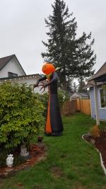 20181008_165450 (1) pumpkin man
