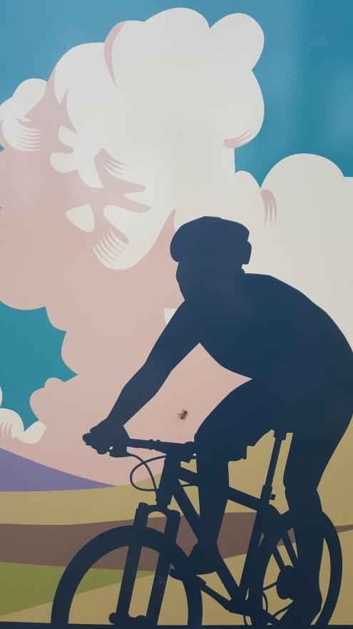 20200608_104111 bike art